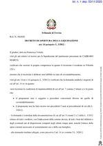 Decreto apertura liquidazione  R.G. 3/20