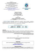 Fiat Scudo del '98 in asta telematica con scadenza il 06/07/2020