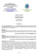 Fall. 19/16 Belluno - Asta auto e attrezzatura/ricambi per autofficina