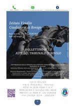 BOLLETTINO MOBILIARE N.13 EDIZIONE ROVIGO GARA DEL 15 al 23 LUGLIO 2020