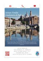 Bollettino n. 28 Padova dal 21 Ottobre al 22 Novembre 2019