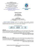 Fiat Ducato e Scudo in asta telematica con scadenza il 30/09/2020