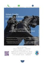BOLLETTINO MOBILIARE N. 7 EDIZIONE ROVIGO GARA DAL 03 AL 31 MARZO 2020