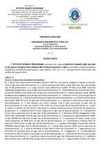 C.P. 7/17 Trib. di Belluno - Attrezzatura edile in asta il 03/03/2020