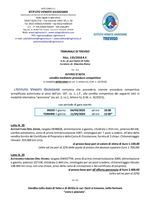 Opel Vivaro e Zafira - aste telematica dal 4 all'11 settembre 2020