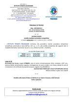 Fiat Scudo del 2014 - Asta telematica con fine il 26/01/2021