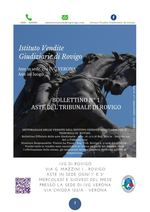 BOLLETTINO MOBILIARE N. 1 EDIZIONE ROVIGO GARA DAL 21 AL 24 GENNAIO 2020