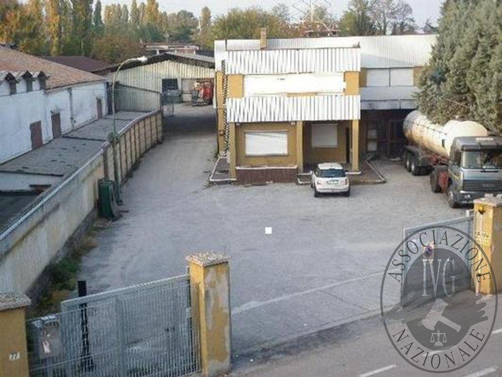 Padova - Grafica 1