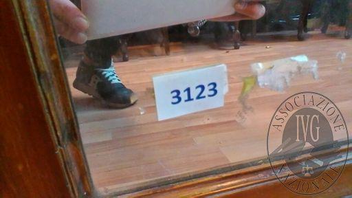 3123-2.jpg