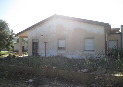 FOTO 5