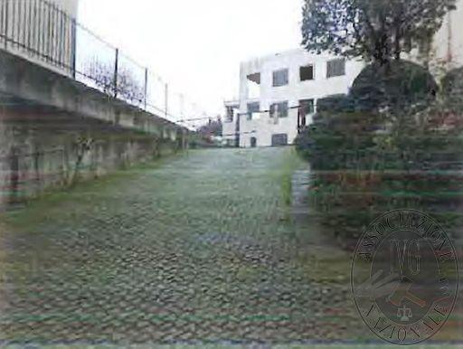 Città Verde_Luini 6.jpg