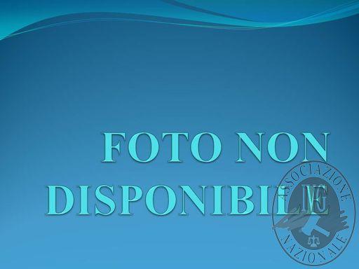 FOTO NON DISPONIBILE.jpg
