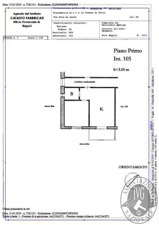 Planimetria_Martos_Forio_7.jpg