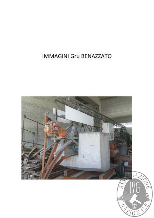 B_Documentazione fotografica Gru Benazzato (2)_Pagina_1.jpg