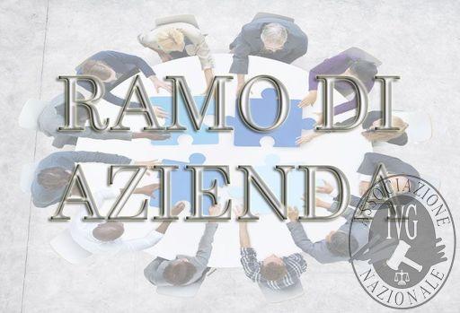 RAMO DI AZIENDA PER L'ESERCIZIO DELL'ATTIVITA' EDILE DI COSTRUZIONE E RISTRUTTURAZIONE