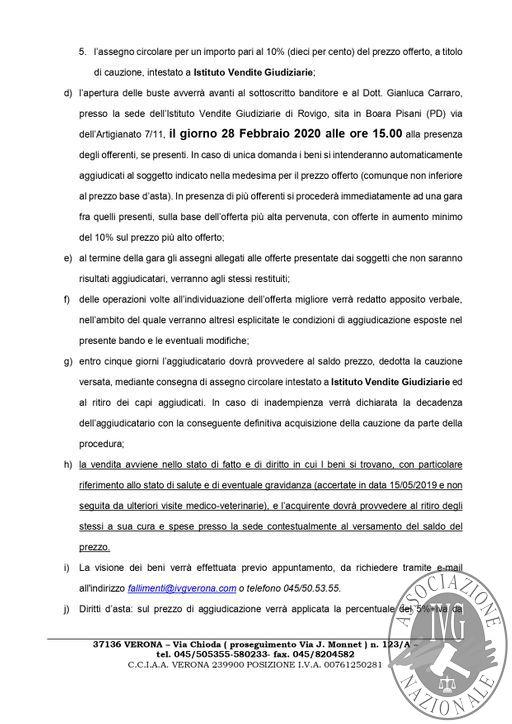 BOLLETTINO MOBILIARE N. 4bis EDIZIONE ROVIGO GARA IL GIORNO 28 FEBBRAIO 2020 ORE 15.30 IN BOARA PISANI (PD) VIA DELL'ARTIGIANATO 7-11_page-0004.jpg