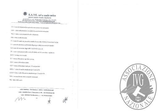 BOLLETTINO N. 51 EDIZIONE VERONA -QUOTE DELLA SOCIETA' - STRADA DELLA SENGIA SRL - ASTA IL GIORNO 11 LUGLIO 2019 ALLE ORE 11.30_page-0040.jpg