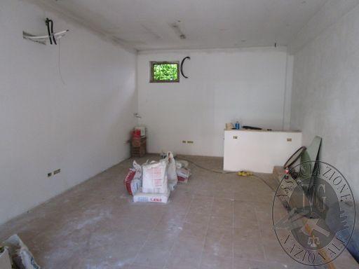 IMG_6225 (FILEminimizer).JPG