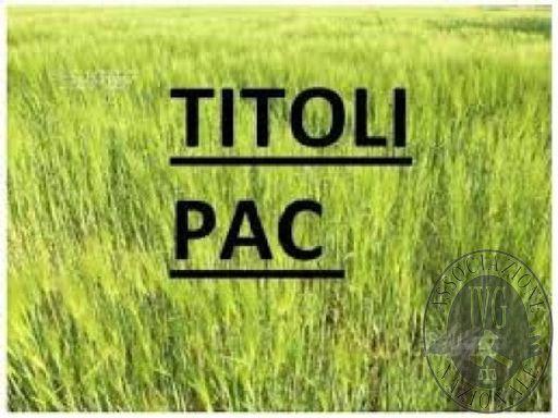 TITOLI PAC.jpg
